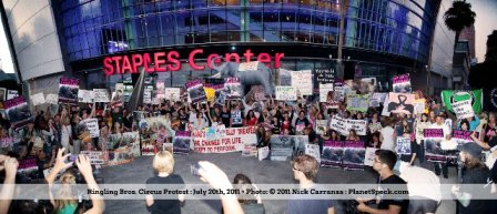 Staples circus protest 2011